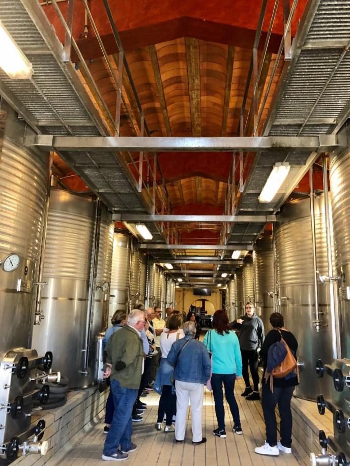 Visita guiada y cata de vinos en las Bodegas Macià Batle