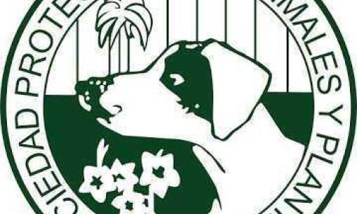 La Sociedad Protectora de animales y plantas abre sus puertas